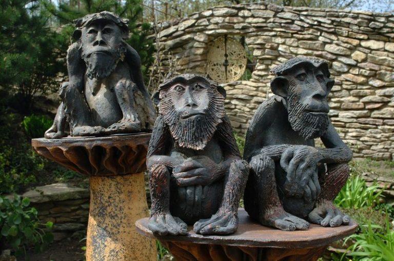majom család