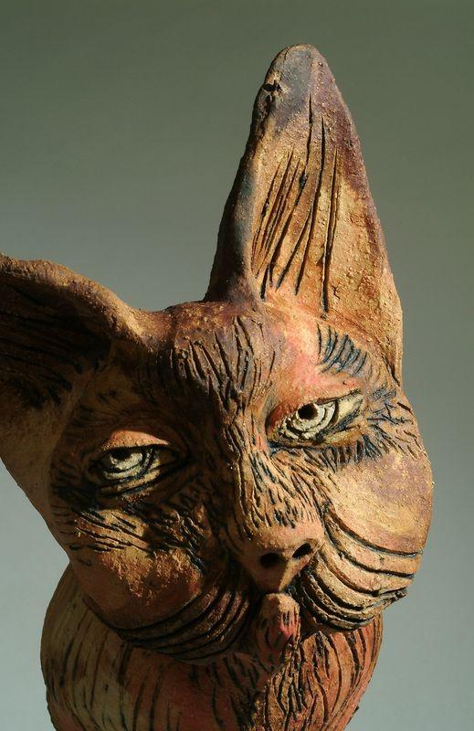 macska 1 portré