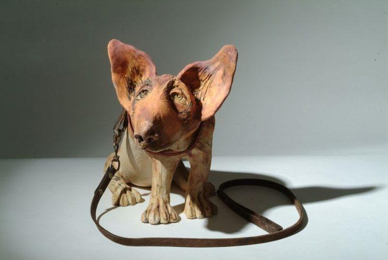 kutya 1