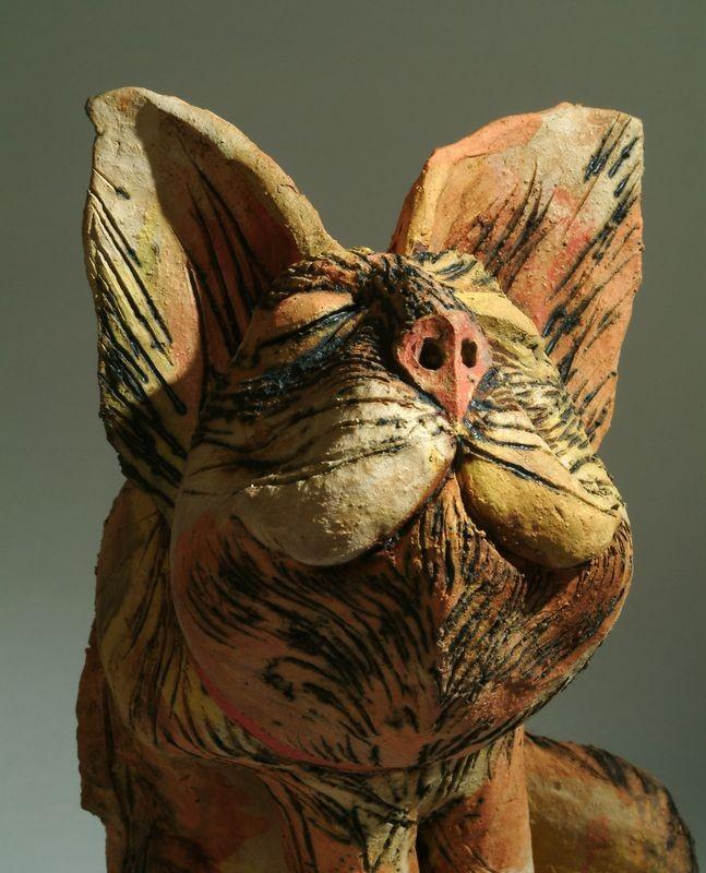 macska 5
