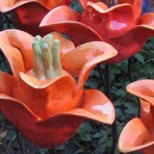 Virágok, gombák